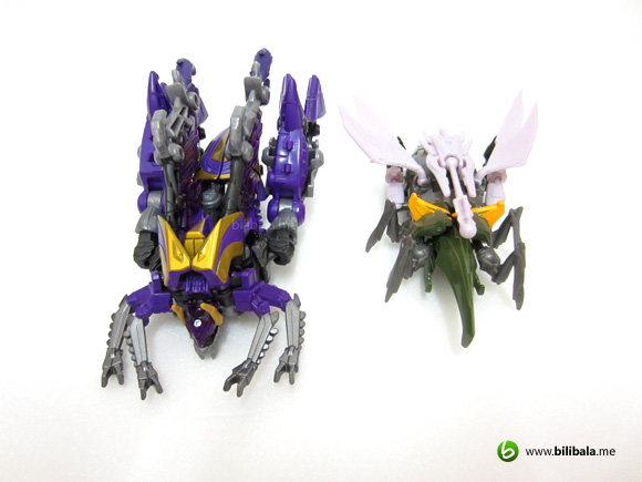 prime_hardshell_compare1