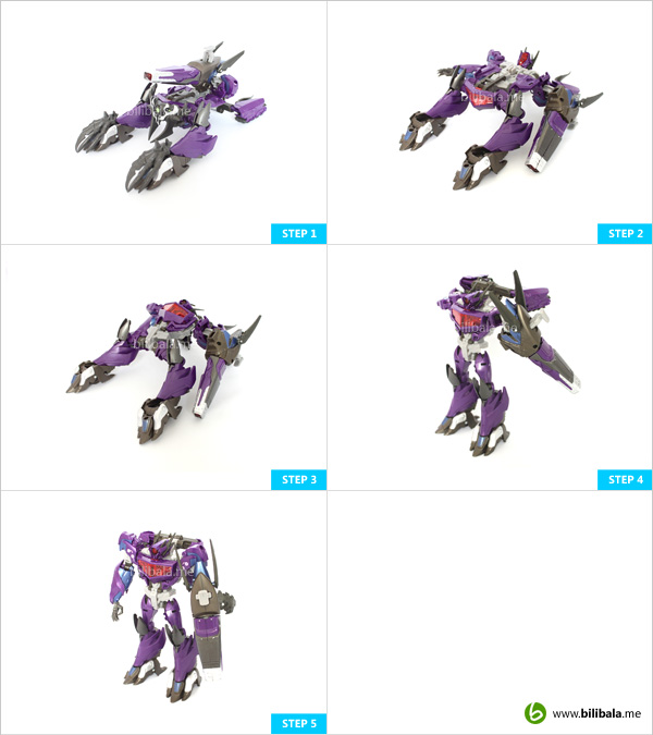 prime_shockwave_transform